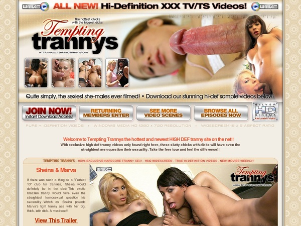 Free Tempting Trannys Hd