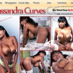 How Much Does Cassandra Curves Cost